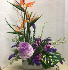 Tropical Paradise Arrangement